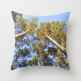 Whisper of Autumn Throw Pillow