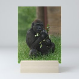 Cheeky Gorilla Lope Mini Art Print