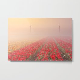 III - Sunrise and fog over rows of blooming tulips, The Netherlands Metal Print