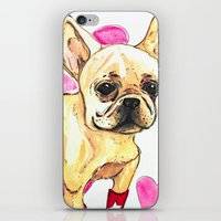 frenchie iPhone & iPod Skins featuring Frenchie by AnnaToman