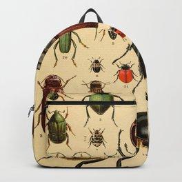 Popular History of Animals Beetles Vintage Scientific Illustration Educational Diagrams Backpack