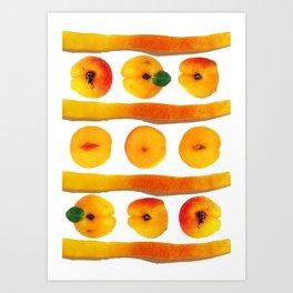 Fruit Apricot3 Art Print
