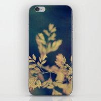 fawn iPhone & iPod Skins featuring Fawn by Piera Catalano