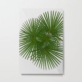 Fan Palm, Tropical Decor Metal Print