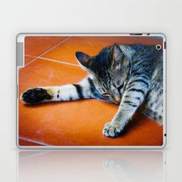 Cat in Hoi An Laptop & iPad Skin