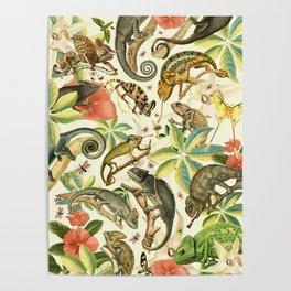 Chameleon Party Poster