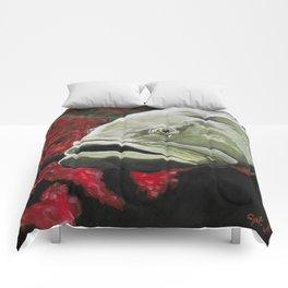 Grouper Comforters
