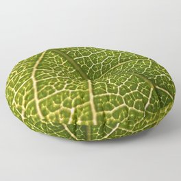 Green Leaf (Color) Floor Pillow