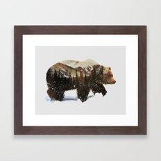 Arctic Grizzly Bear Framed Art Print