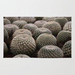 Prickly Cactus Field Rug