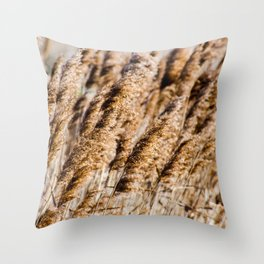 Brown Reeds Throw Pillow