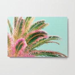 Fiesta palms Metal Print