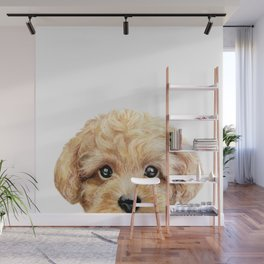 Toy poodle Dog illustration original painting print Wall Mural