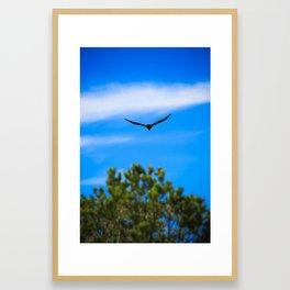 Flight 3 Framed Art Print