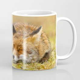 Comfortably Fox (red fox sleeping) Coffee Mug