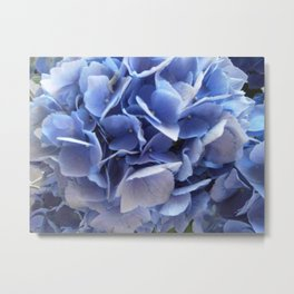 Light Blue Flowers Metal Print