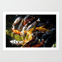 Koi Fish Abstract Art Print