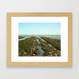 Bowling Ball Beach XIII Framed Art Print