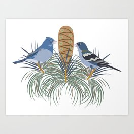 Blue Chaffinch Art Print