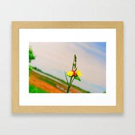 Before Yellow Flowers Framed Art Print