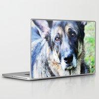 german shepherd Laptop & iPad Skins featuring GERMAN SHEPHERD PHOTOGRAPH by Allyson Johnson