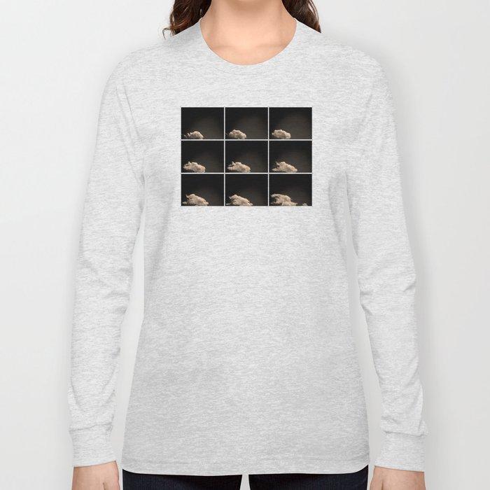 A brief sighting Long Sleeve T-shirt