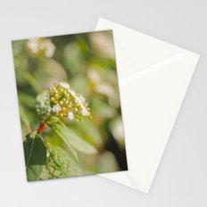 Autumn Day Stationery Cards