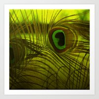 peacock feather Art Prints featuring Peacock Feather by TaLins