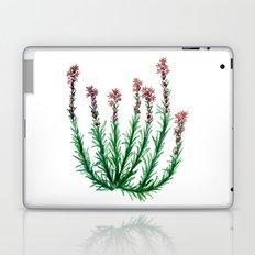 Heller's Blazing Star Laptop & iPad Skin