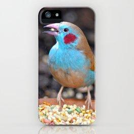 Cordon Bleu Finch iPhone Case