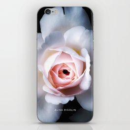 Night Rose of the Secret Rose Collection iPhone Skin