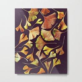 Ginkgo Leaves Metal Print