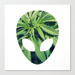 Alien Weed Canvas Print