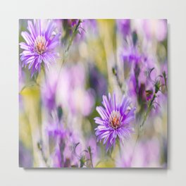Summer dream - purple flowers - happy and colorful mood Metal Print