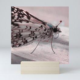 Chill Butterfly Mini Art Print