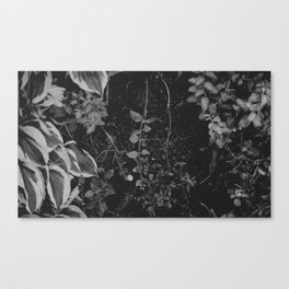 Living Wall B&W Canvas Print