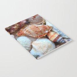 Seashells by the Seashore Notebook