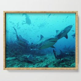 magnificent bull sharks Serving Tray