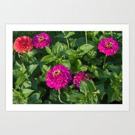 Munsinger Gardens One Art Print