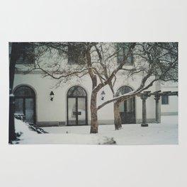 snow in wels (2) Rug