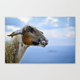 Goating Filfla Canvas Print
