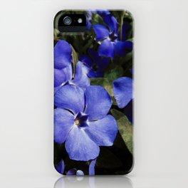 Wonderland Blue iPhone Case