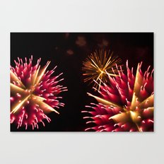 Efflorescence 34 Canvas Print