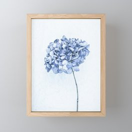 Hydrangea Blue 2 Framed Mini Art Print