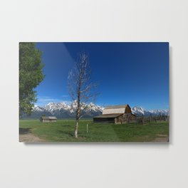 At The Mormon Row Metal Print
