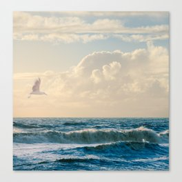 Free to Be Canvas Print