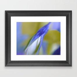 Birdflower Abstract Framed Art Print
