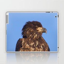Golden Eagle on the Kenai Laptop & iPad Skin