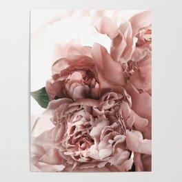 Blush Pink Floral Poster