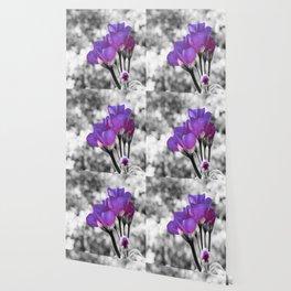 Fuchsia Violet Flowers Pop Of Color Wallpaper